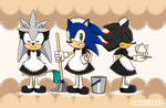 maid hedgehogs