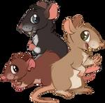 Rattie designs