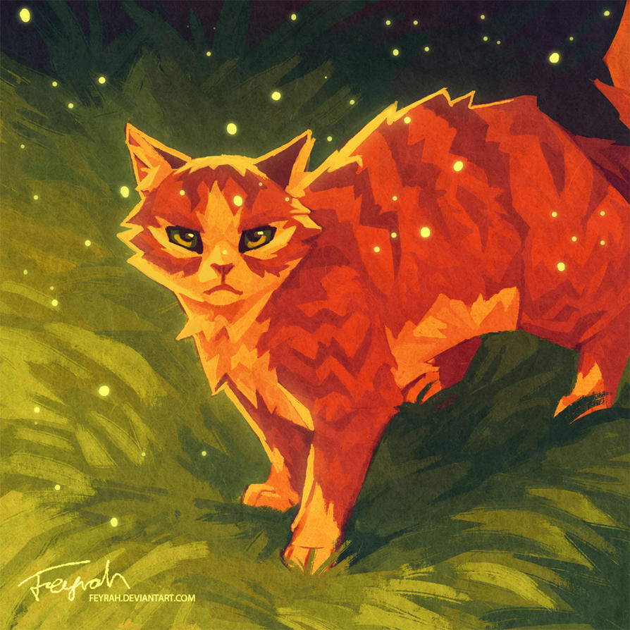 1846 best WARRIOR CATS 2!! images on Pinterest
