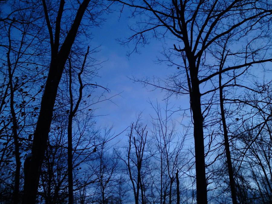 Blue by notofthisearth