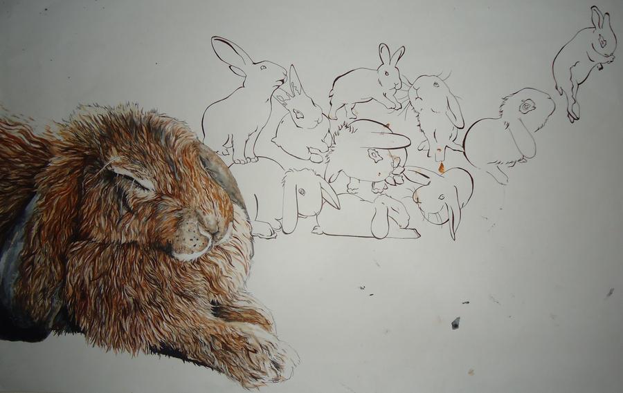 Bunny Dreams by EllaAndTheBunnies