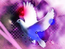 Planet Dove