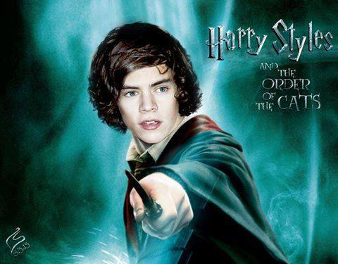 Harry styles Potter by...