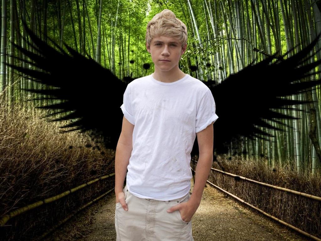 Niall Horan edit by DirectionForLyfe on DeviantArt