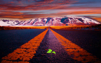 premade background road