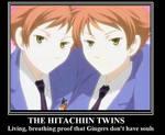 The Hitachiin Twins