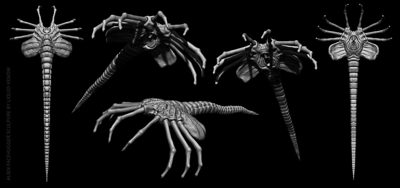 Facehugger sculpture by liquid-venom