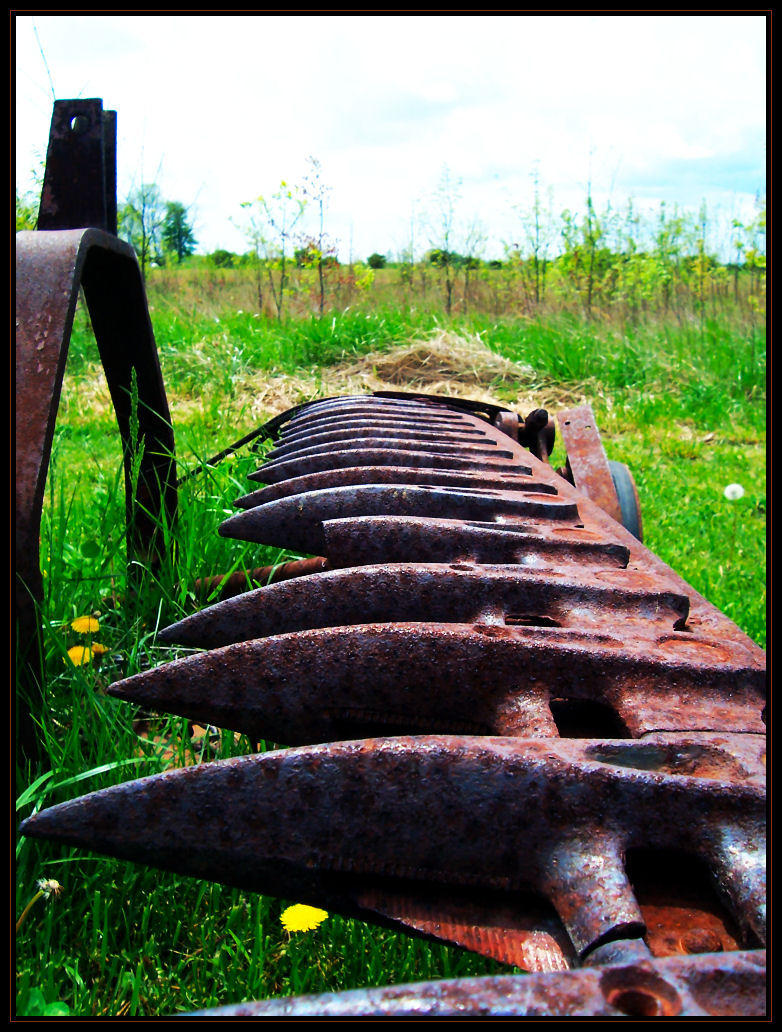 Farm Rust by LarAshPhotography