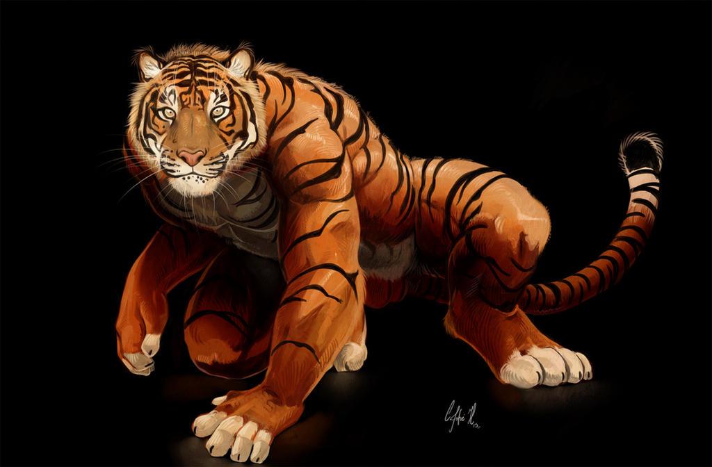 Tiger gaze by Crisjofreart