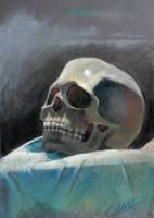Skull Study by AlexDRomero