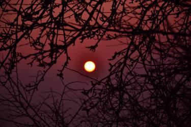 Sunset 9 by Falanderr