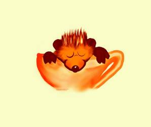 Hedgehog in a Teacup