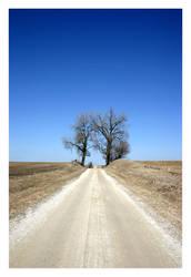 A long dirt road... by iamtsu
