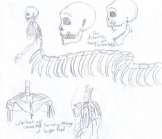 Naga Skeleton Sketches by City-of-Faith