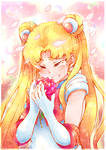 Sailor moon and rose