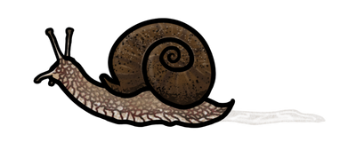 Snail trail by AleraianPrincess