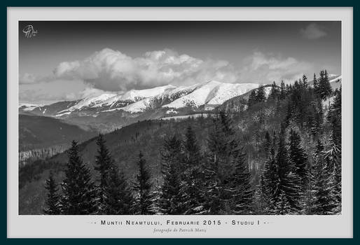 Neamtului Mountains - February 2015 - Study 1
