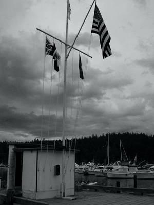 Flags by digitalblue
