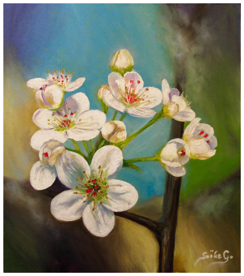 Pear blossom by szog88