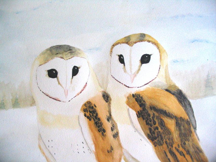 The Barn Owls by ekvogl