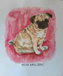 Mister Karlsson