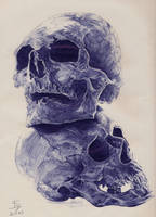Skull by LC-Shen