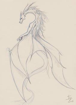 Dragon sketch1