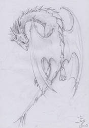Dragon sketch3