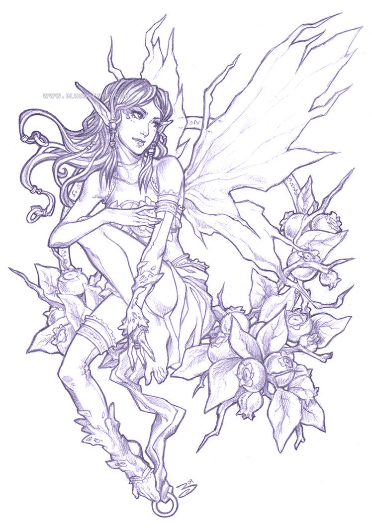 Pencil - Blueberry Fairy by bluessence on DeviantArt