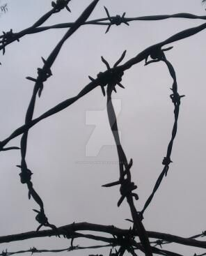 Barbed Wire by IronOutlaw56