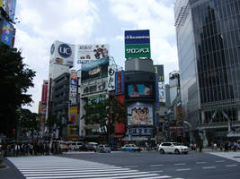 Shibuya scramble crossing No.2 by fujihayabusa