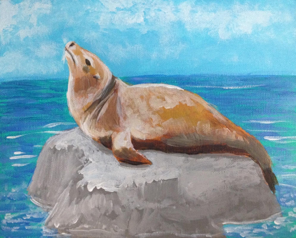 Sealion by leloi
