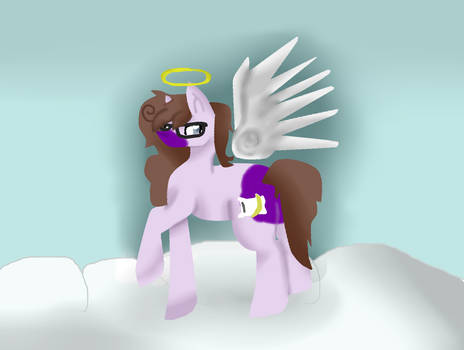 Where the happy ponies go