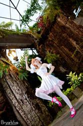 Dance of Hope (Princess Tutu) by katsu-05