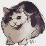 Pippi (Sketch for Rox)