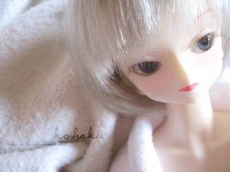 Kohaku -Dollfie- by sekiray
