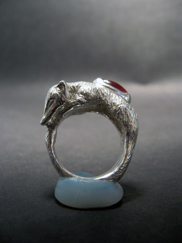 Coati Ring by eggyyockio