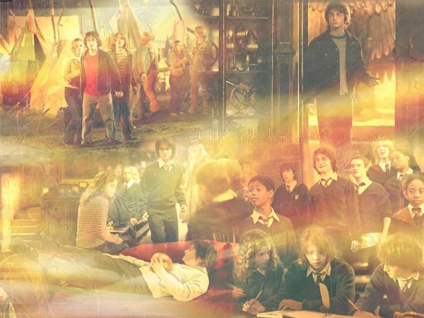 Harry Potter 4 by Izaya-chan