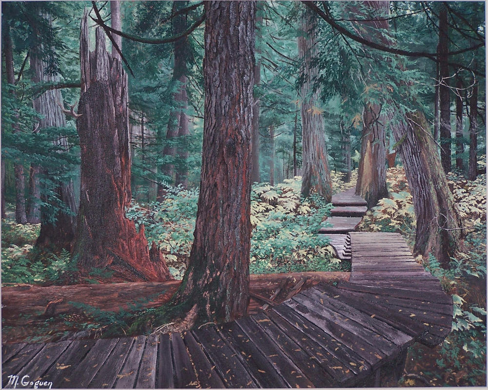 Red Cedar Forest ~ Western red cedar forest by dreamscape weaver on deviantart