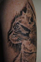 Cat tattoo 1 by IraW0lv