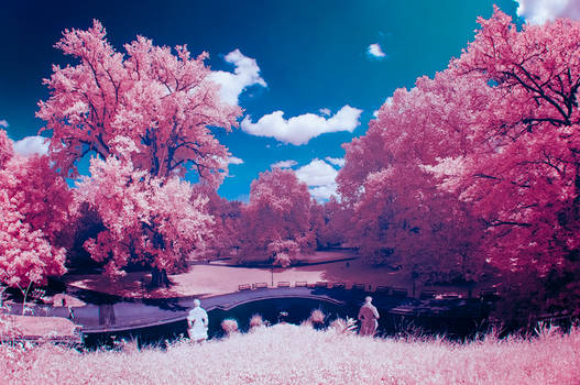 Cotton Candy Land - III