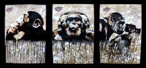 Think Monkey Listen Monkey Film Monkey