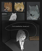 Wolf's Rain Black Light 13 by SilverWolf7444