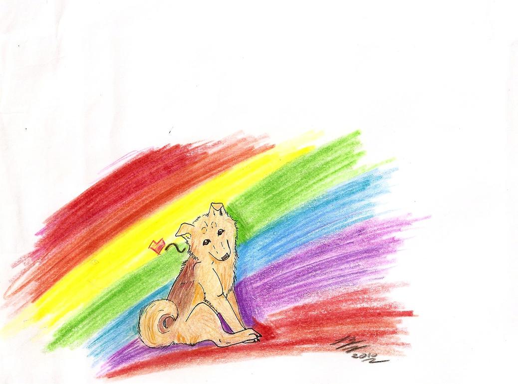 Rencontre rainbow