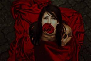 Rose by Mishkina