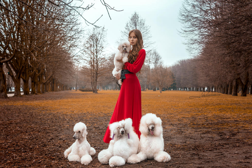 # Lady and dogs by Mishkina