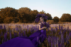 # Princess of the Lupines