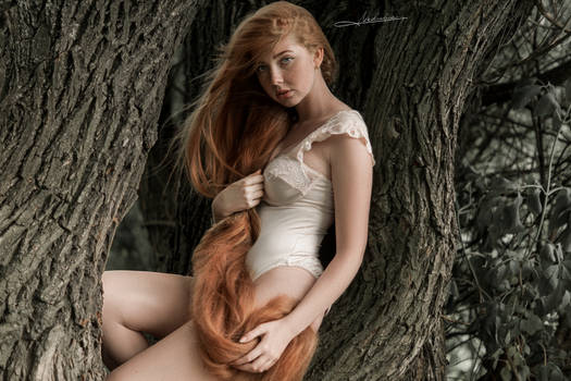 # Eve in the forest 2