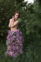 # Lilac by Mishkina