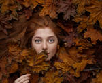 Autumn by Mishkina